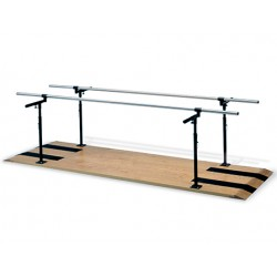 Hausmann 1391 Parallel Bars